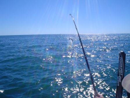 October 2010 Tarpon Fishing