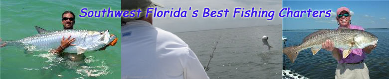 Southwest Florida's Best Fishing Charters! Fishing Fort Myers, Pine Island,  Boca Grande, Charlotte Harbor, Cape Coral and Matlacha.