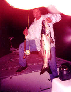 Flyfishing for snook