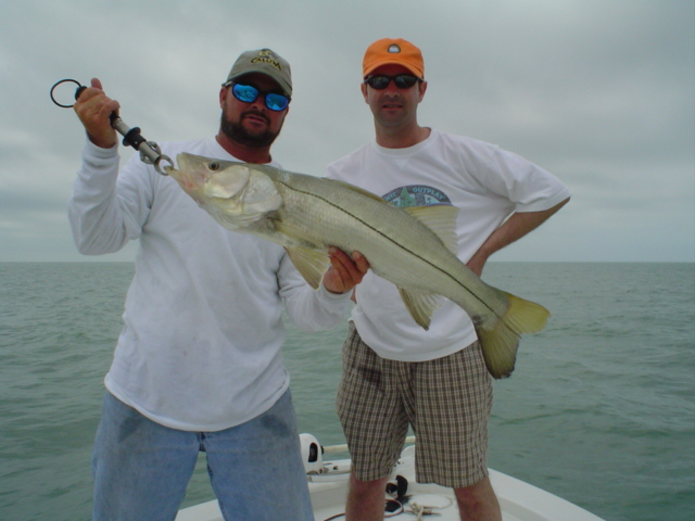 Guided Snook fishing in Florida