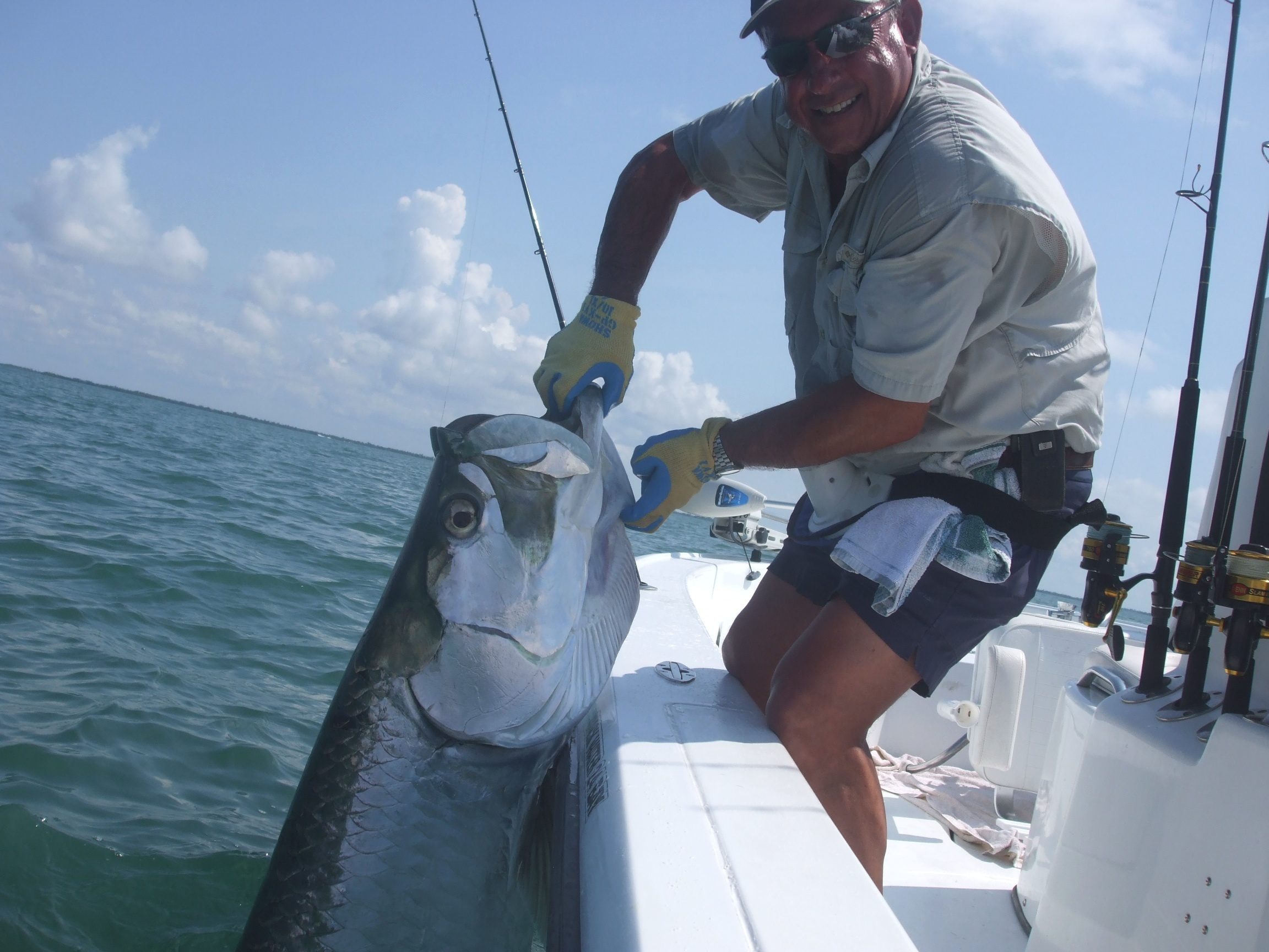 Giant tarpon caught while fishing in Charlotte Harbor near Boca Grande Pass