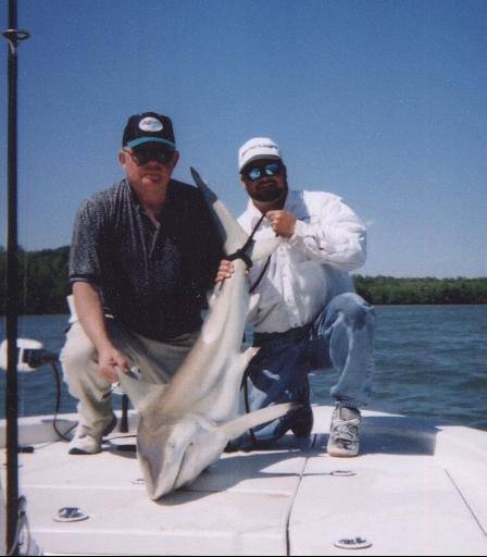 Guided Shark Fishing in Charlotte Harbor and Pine Island Sound