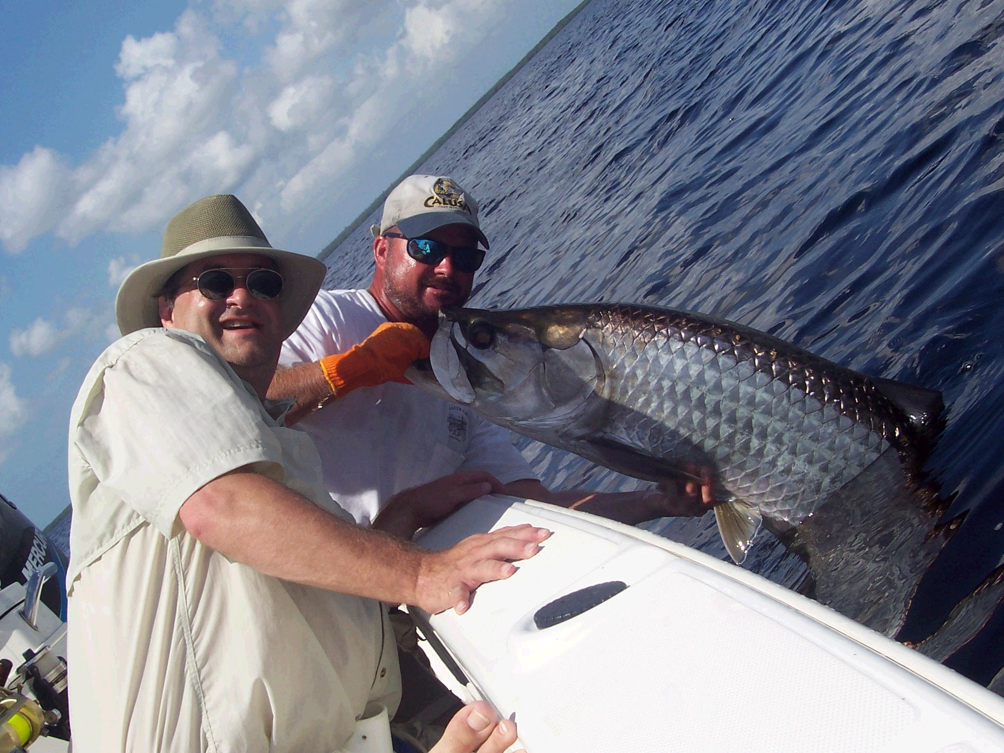 Tarpon Fishing Punta Gorda